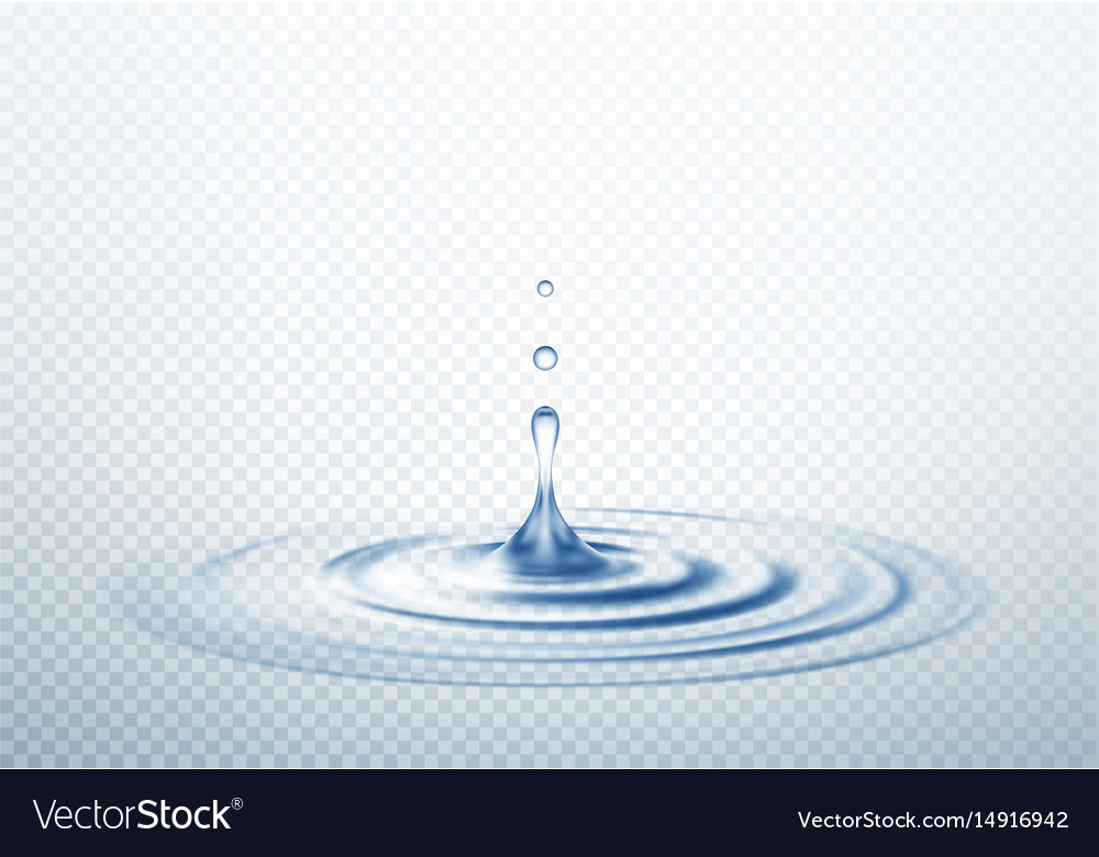 Realistic transparent drop and circle ripples vector image