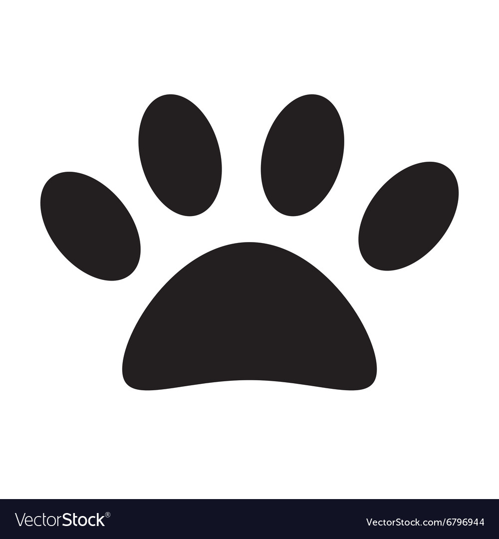 Animal paw print vector image