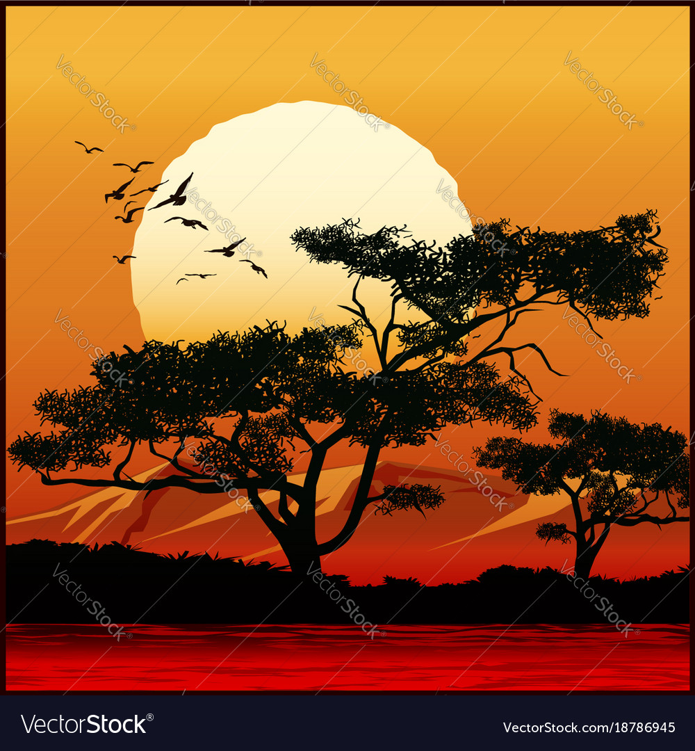 Tree at sunset vector image