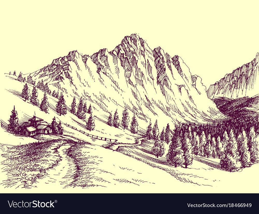 Mountain road alpine scene Royalty Free Vector Image