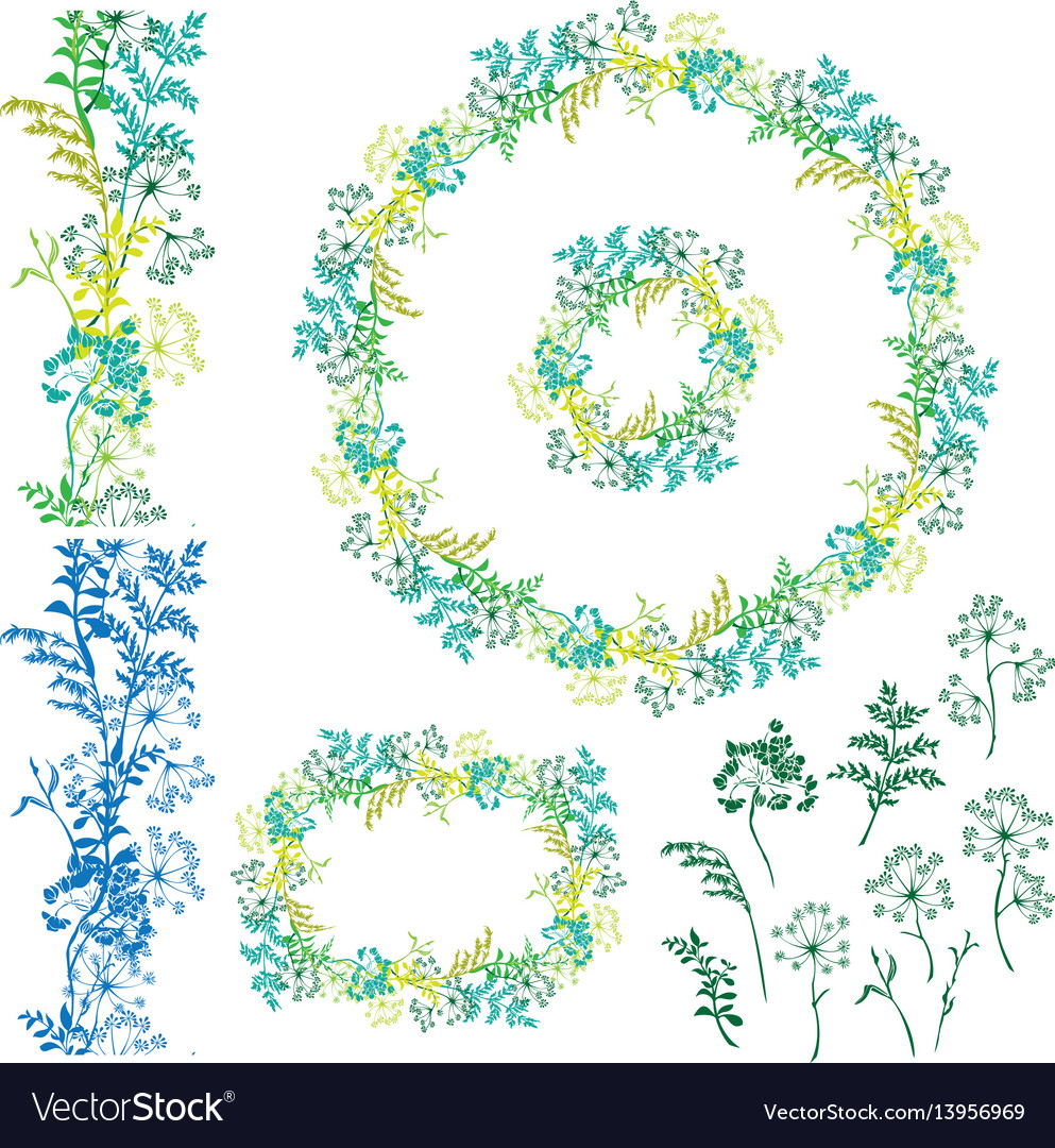 Set of floral frame seamless border and separated vector image
