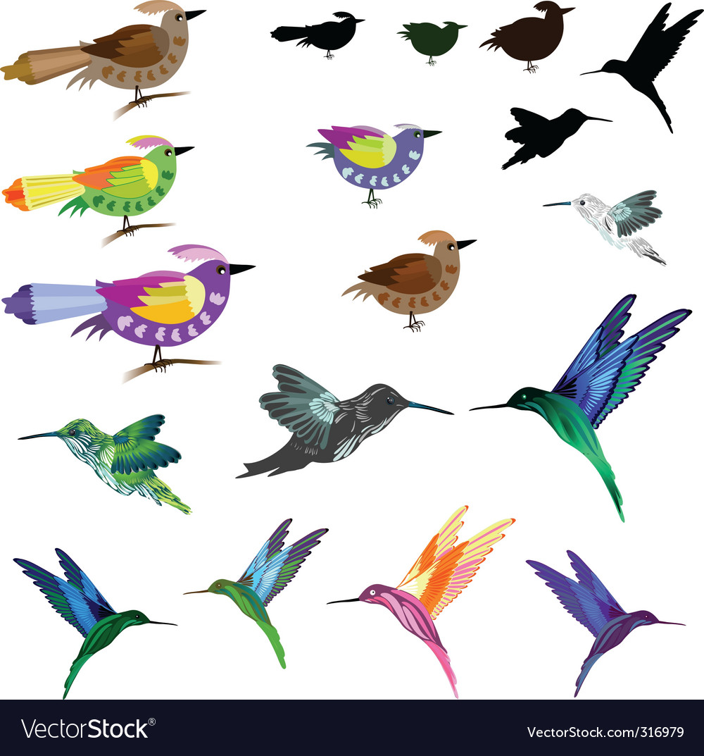 Birds set vector image