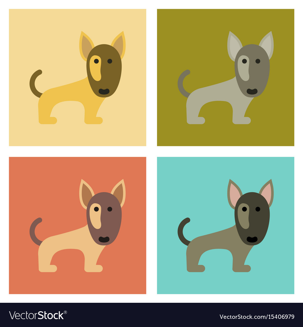 Assembly flat icons pet dog pitbull vector image