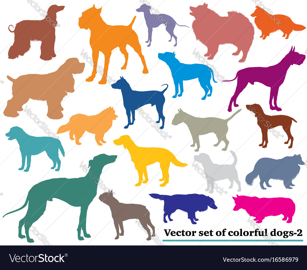 Set of colorful dogs silhouettes-2 vector image