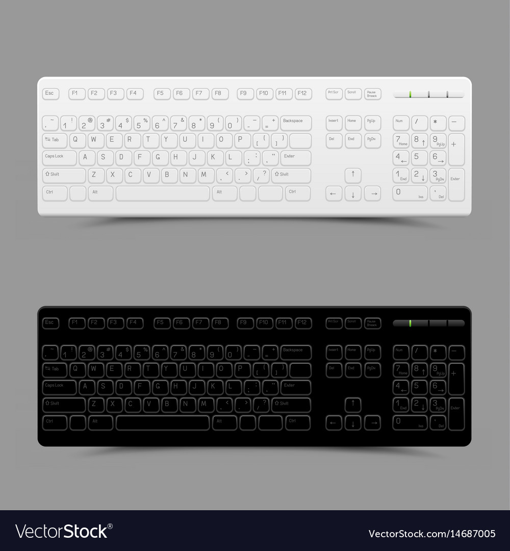 White and black keyboard vector image