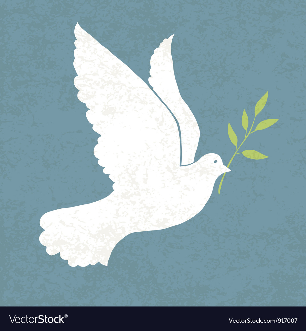 Dove with olive vector image