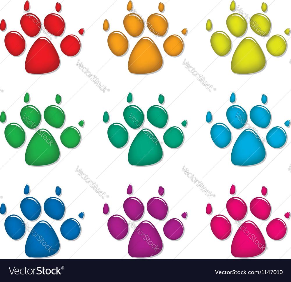 Dog foot prints vector image