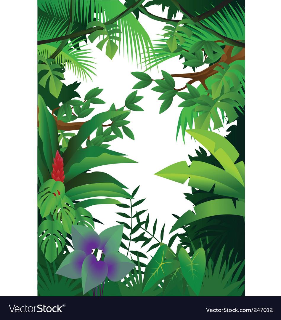Jungle vector image