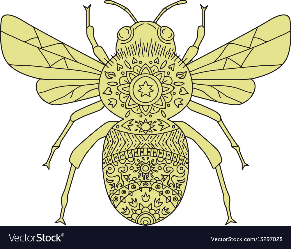 Bumble bee mandala vector image