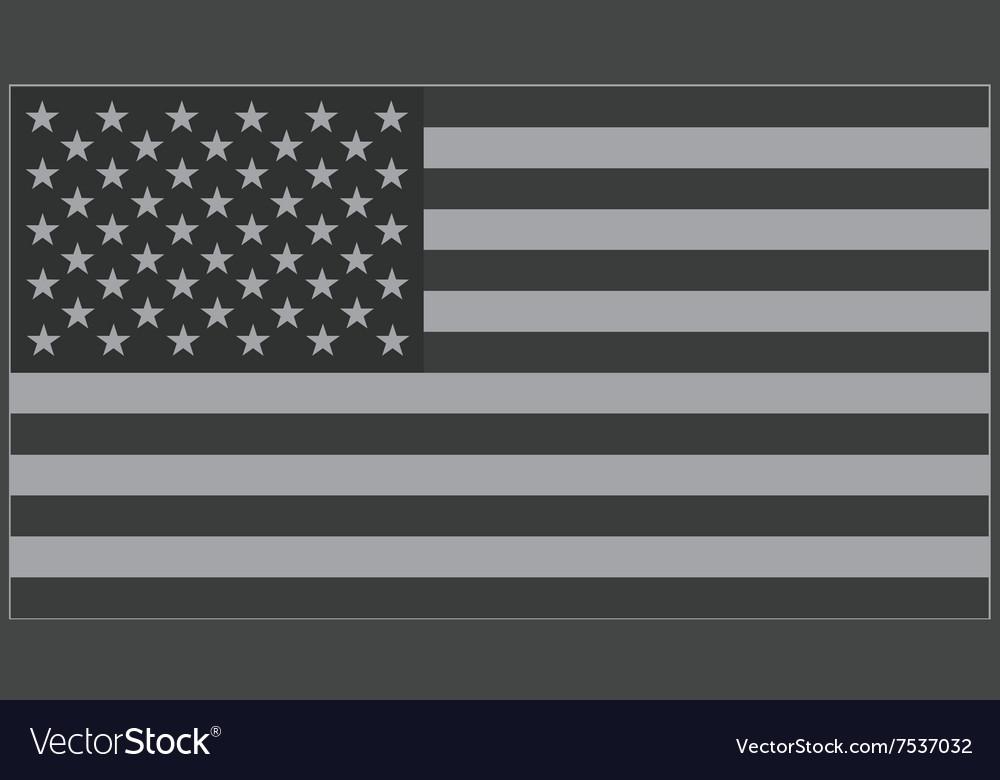 US flag grey vector image