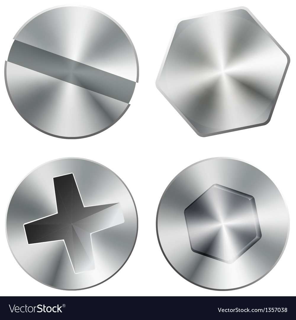 Metal shiny screws and bolts vector image