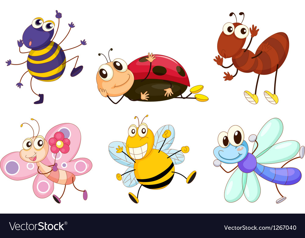 Different bugs and insects vector image
