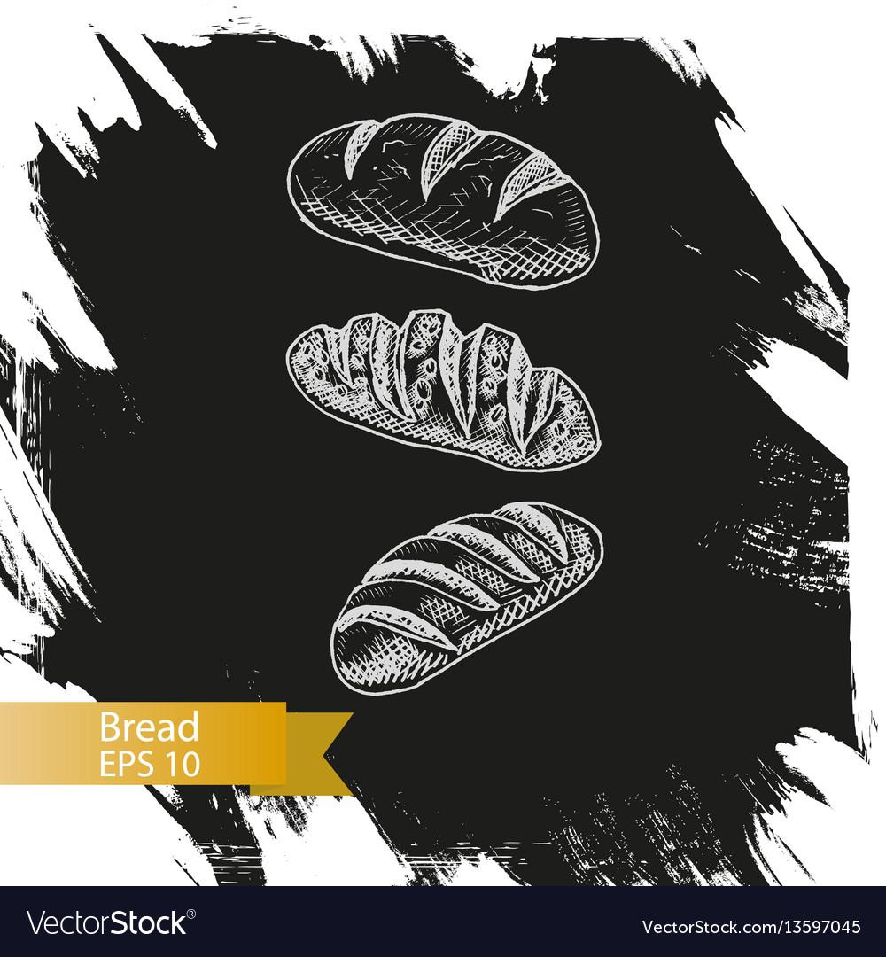 Sketch - bakery bread loaf vector image
