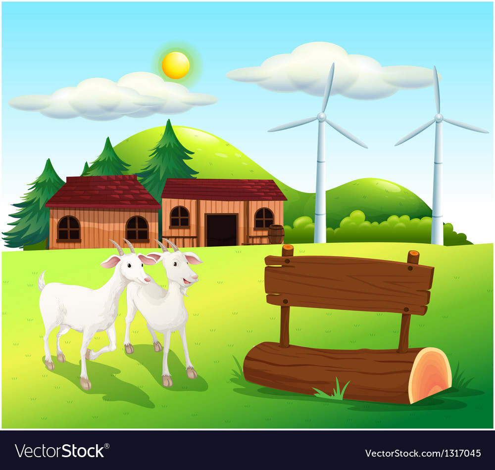Two goats near the wooden signboards vector image