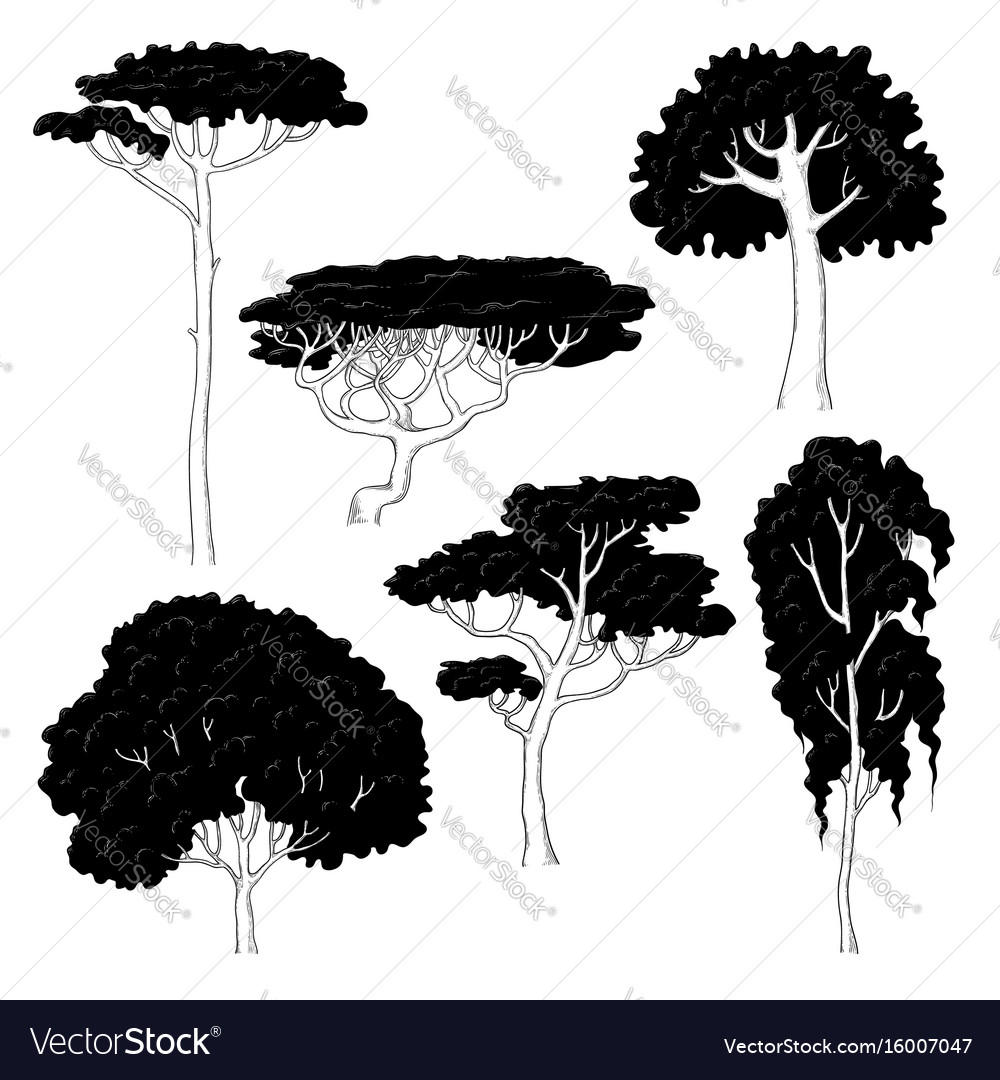 Sketch of black silhouettes of vector image