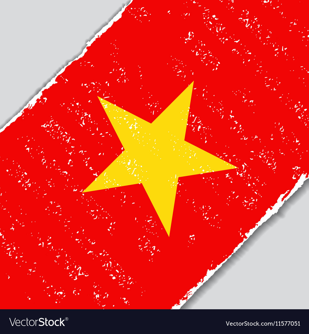 Vietnamese grunge flag vector image
