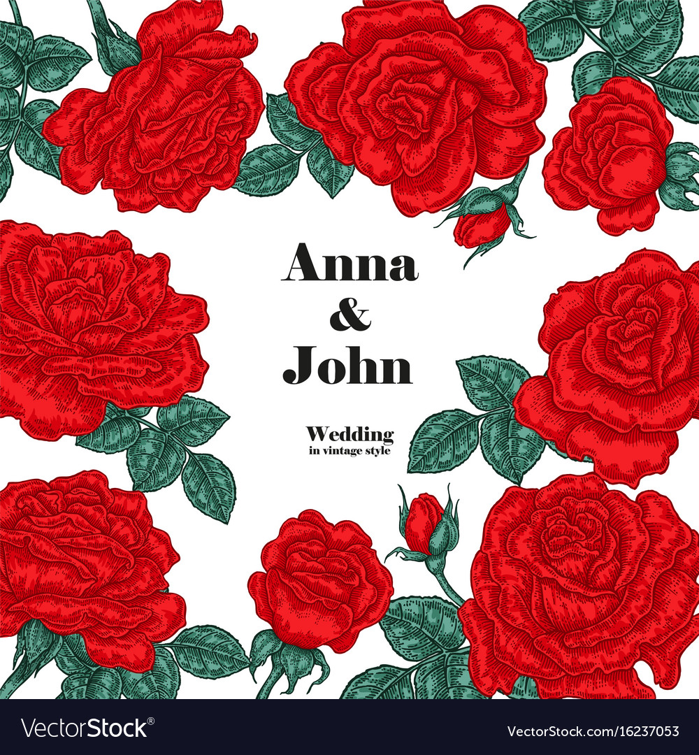 Floral wedding invitation card sketch red roses vector image
