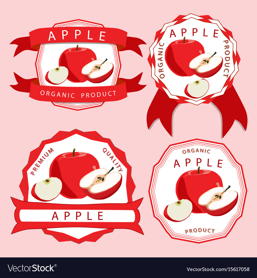 The theme apple vector image