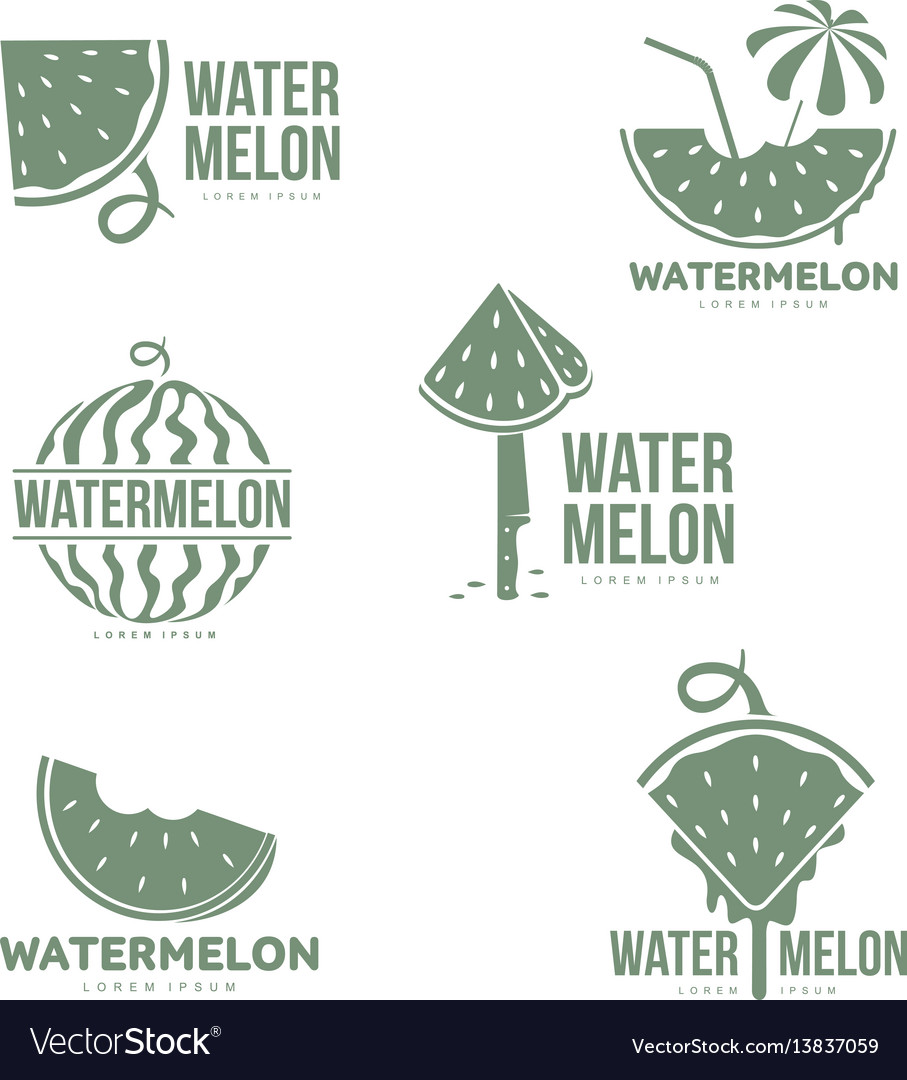 Graphic silhouette watermelon logo templates vector image