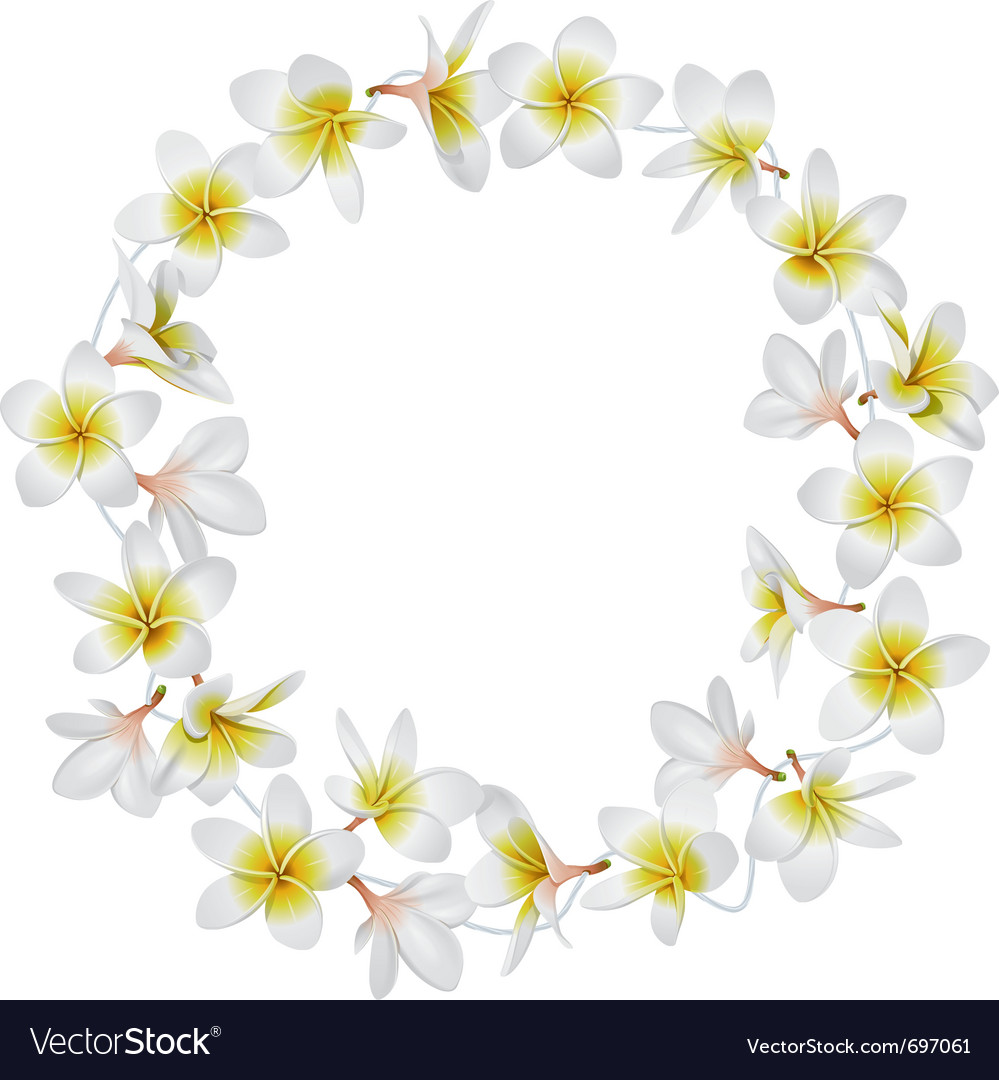 Tropical necklace vector image