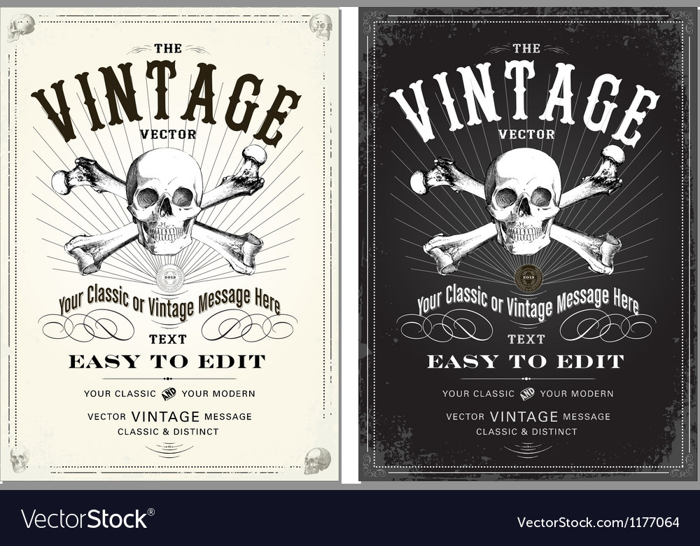 Vintage skull frame set vector image