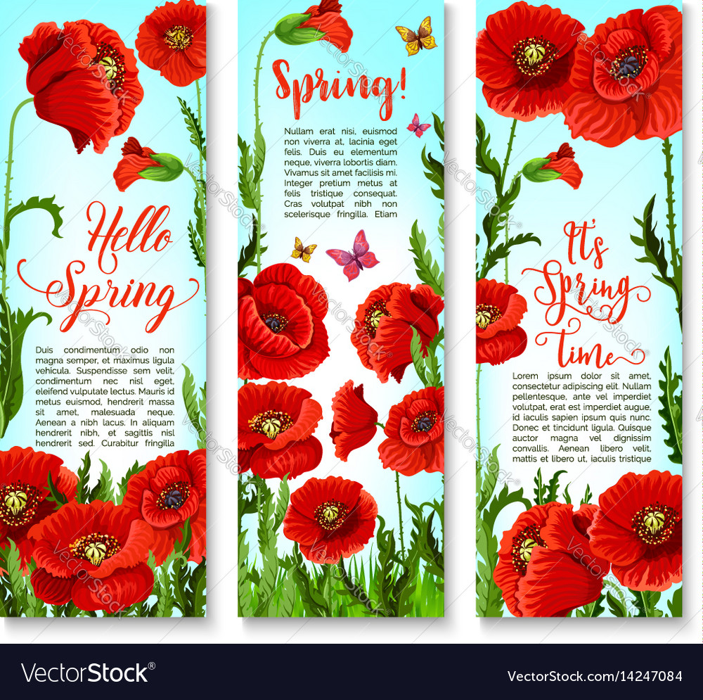 Banners of spring poppy flowers and quotes vector image mightylinksfo Image collections