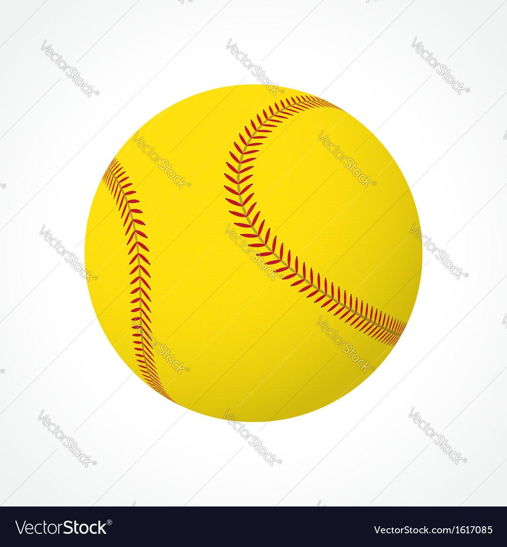 Softball ball vector image