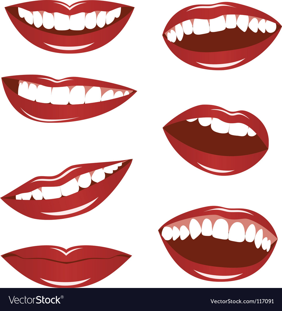 Female lips vector image