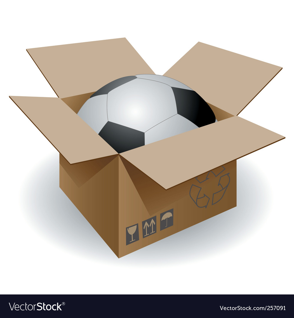 Ball in the box vector image