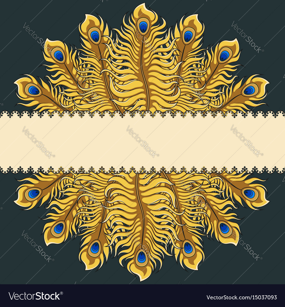 Greeting card with gold peacock feathers ribbon vector image