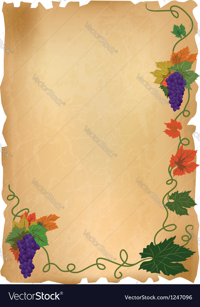 Grapes on old paper vector image