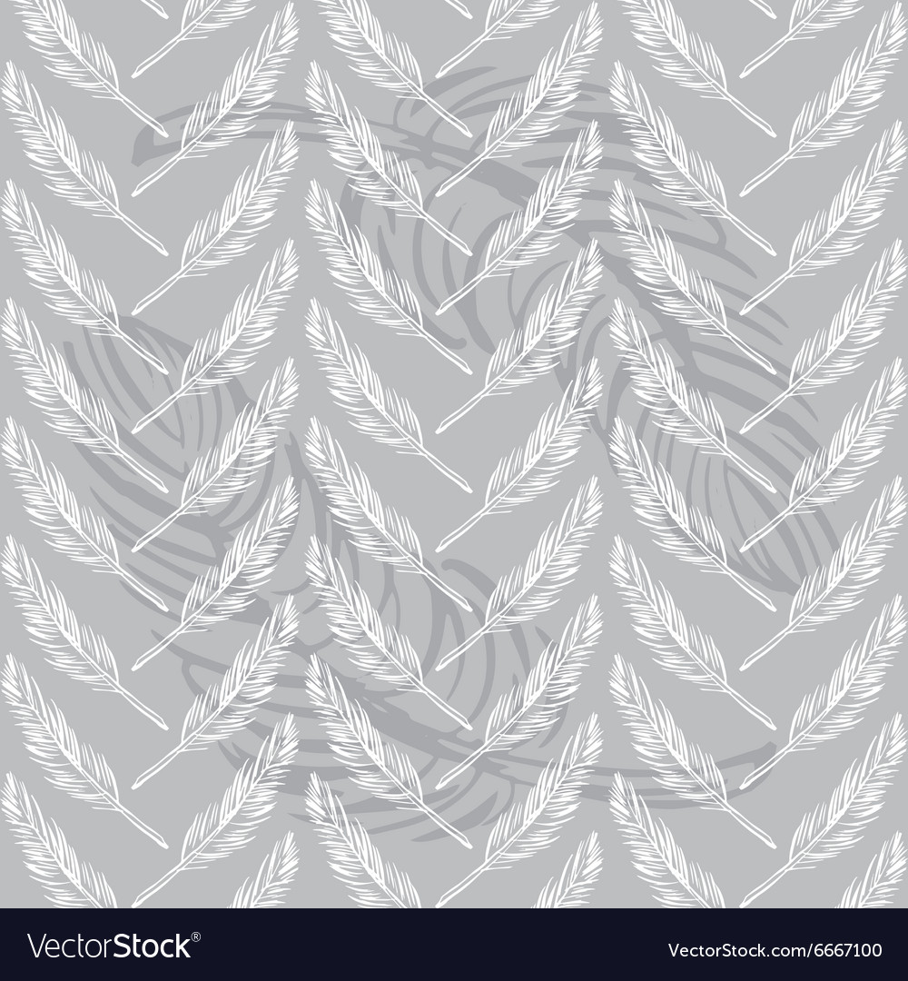 Feathers seamless background Beautiful pattern vector image