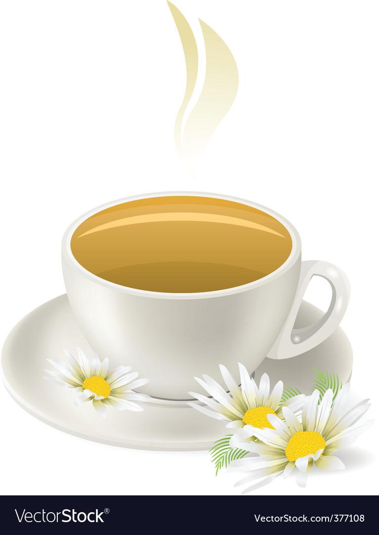 Cup of hot herbal tea vector image