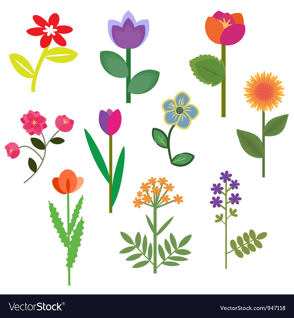 Flowers set vector image