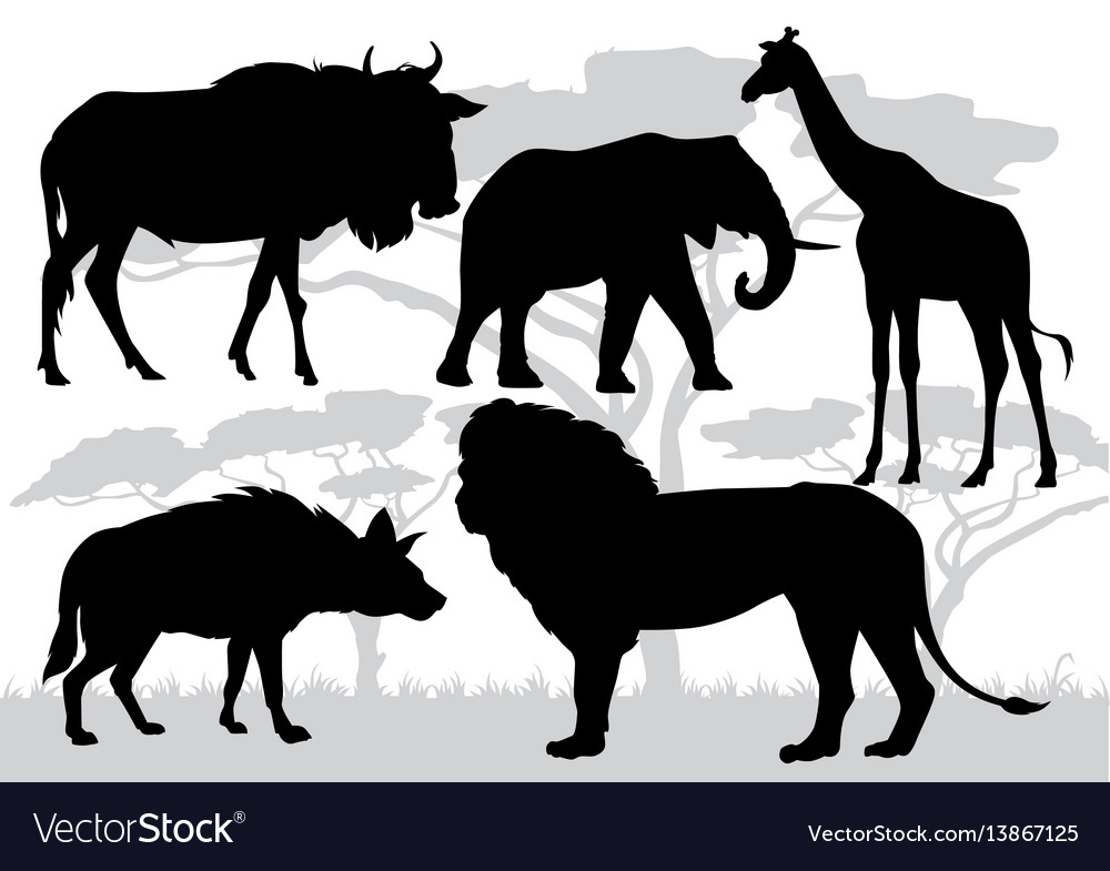 African savannah stock vector image