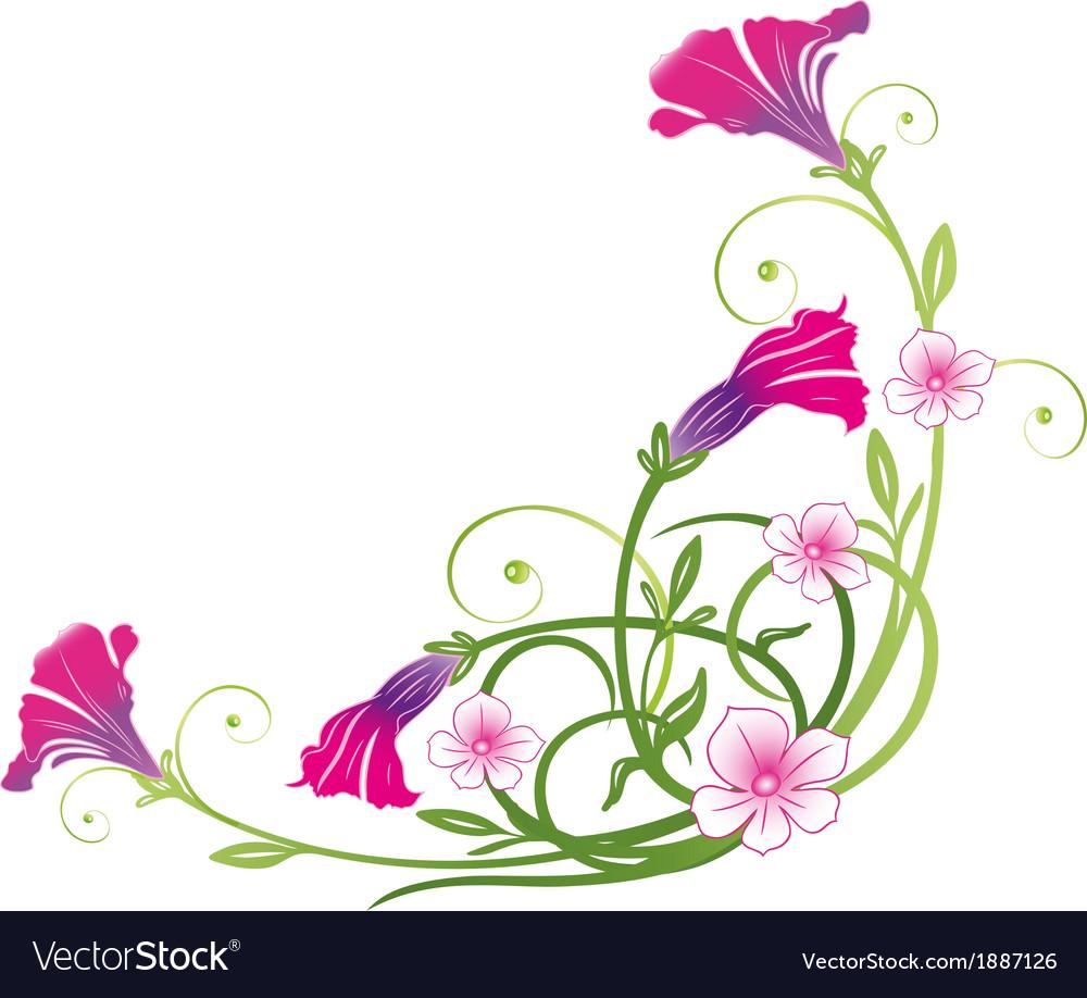 Petunias summer vector image