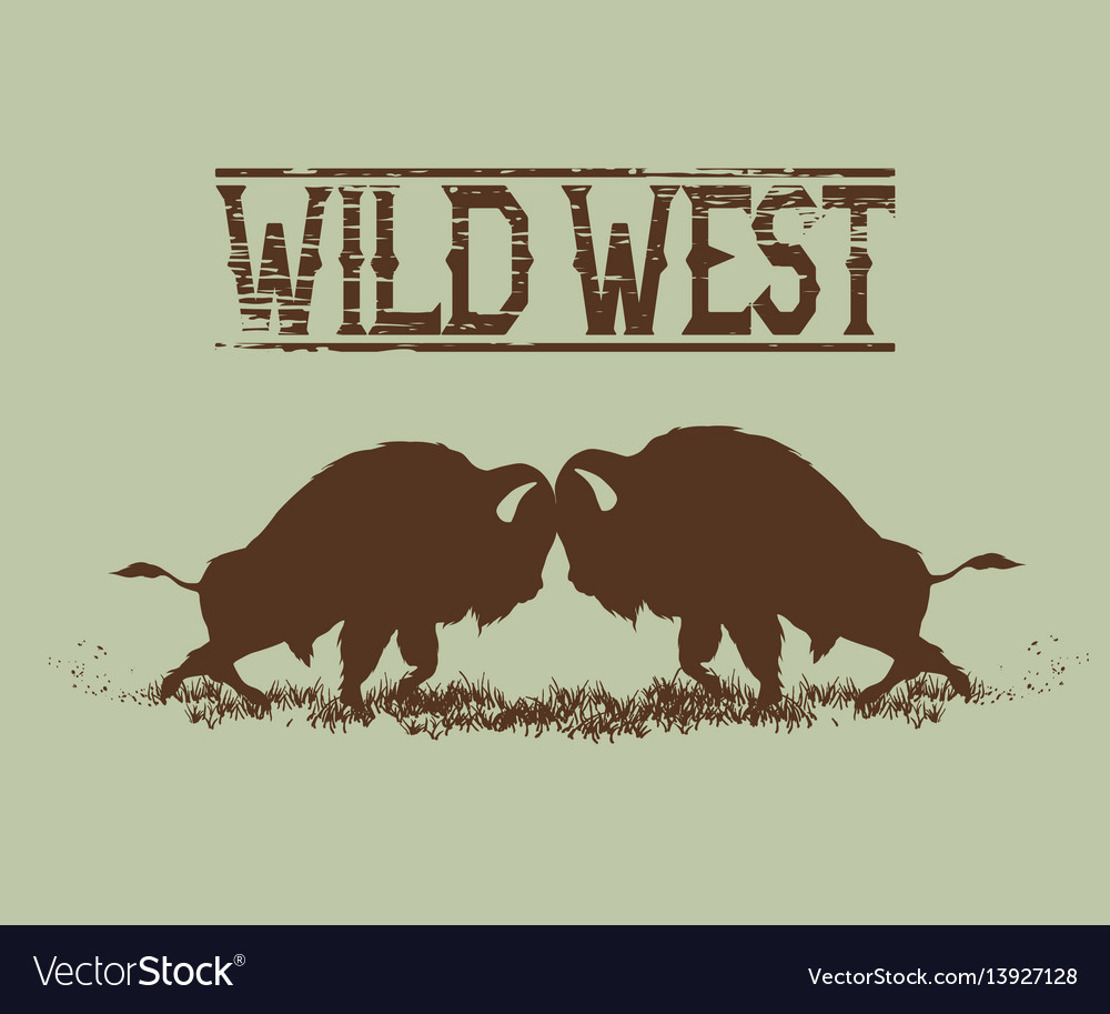 Battle of buffaloes between themselves vector image