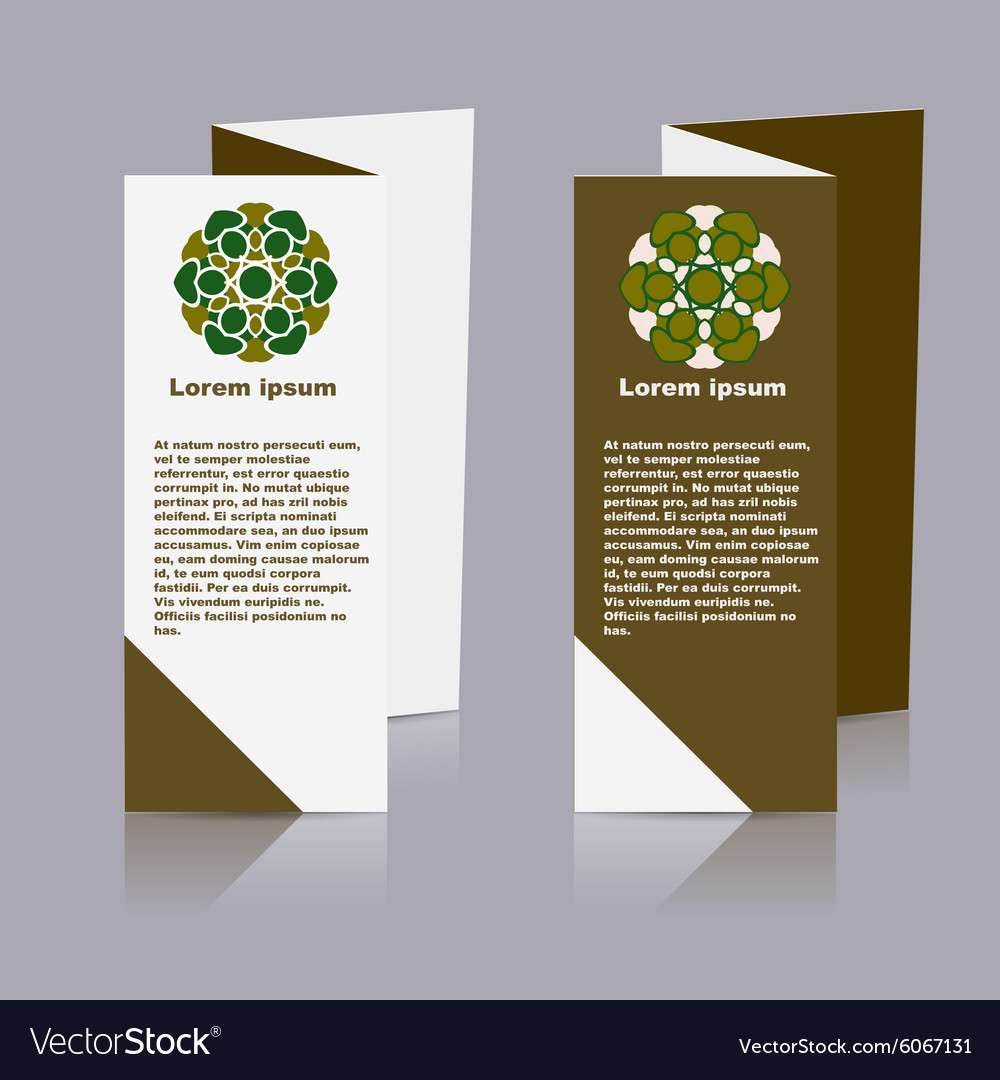 Brochure Layout Design Template vector image