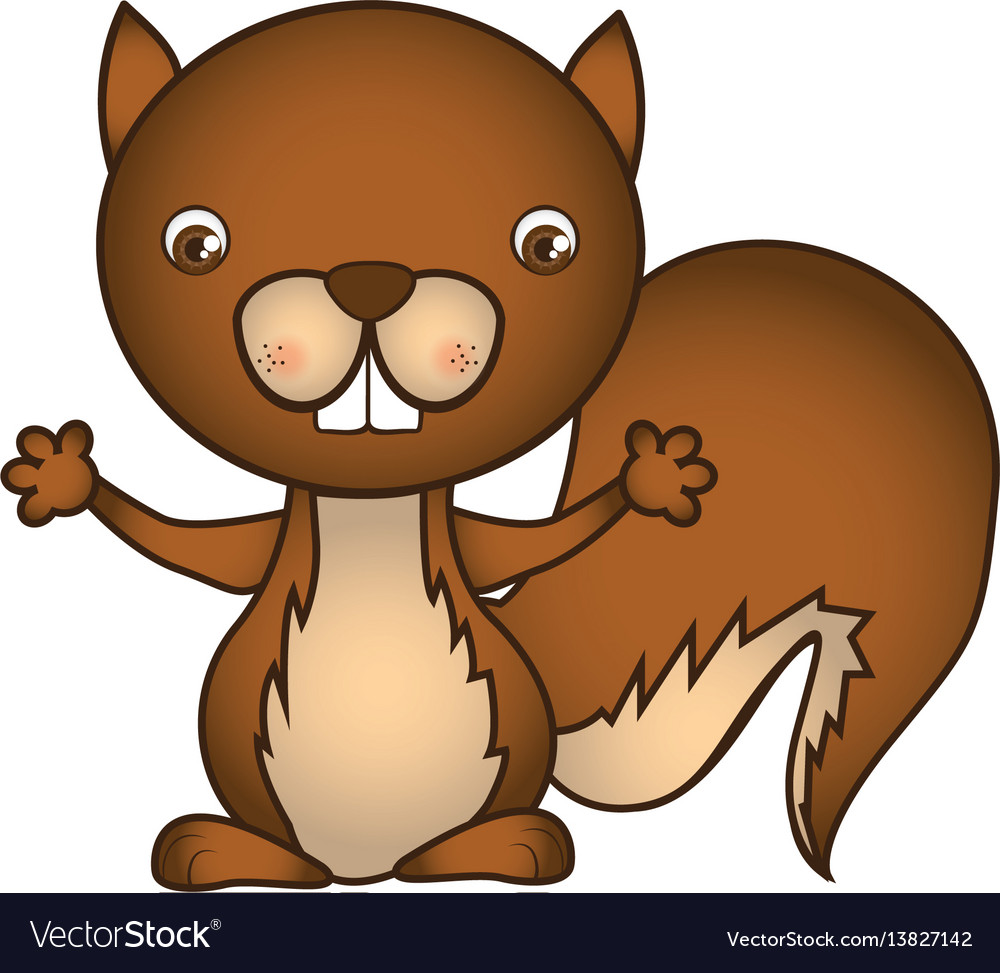 Colorful caricature cute chipmunk animal rodent vector image