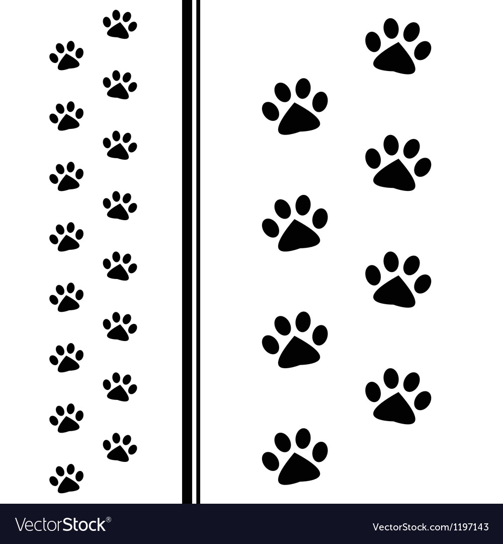 Animal paw prints vector image