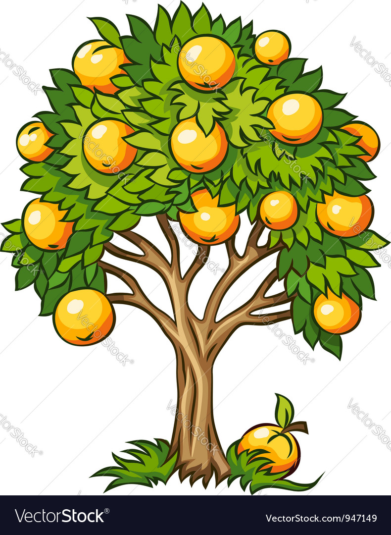 Fruit tree isolated Royalty Free Vector Image - VectorStock