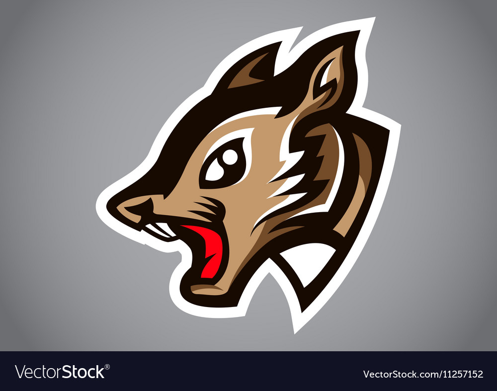 Squirrel head gray shield logo vector image