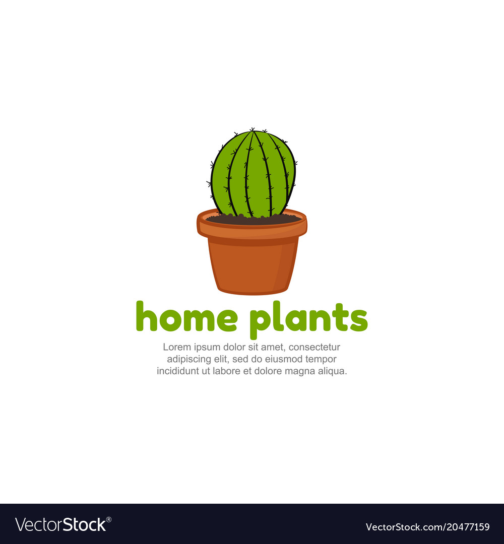 Template logo for home plants cartoon cactus icon Vector Image