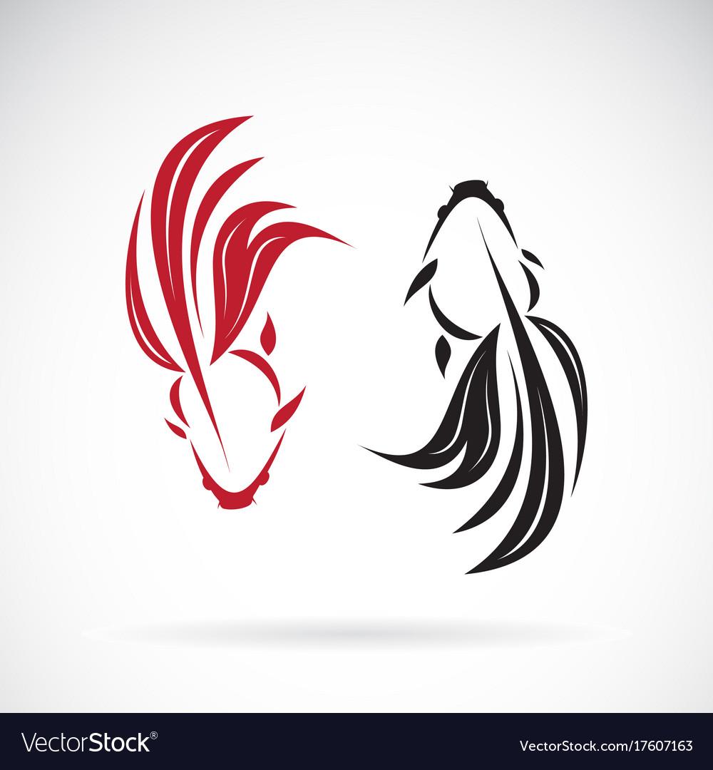 Goldfish design on white background pet animals vector image