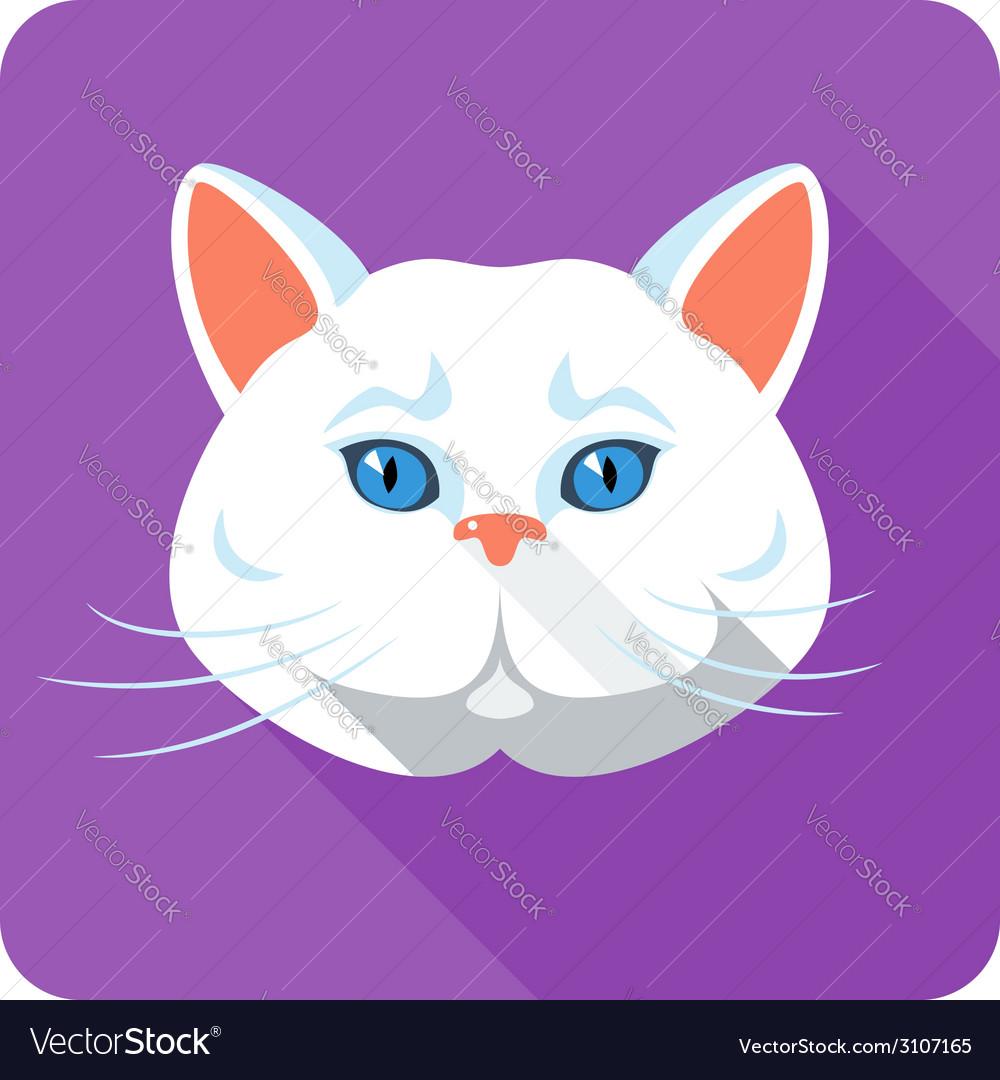 White british Cat icon flat design vector image