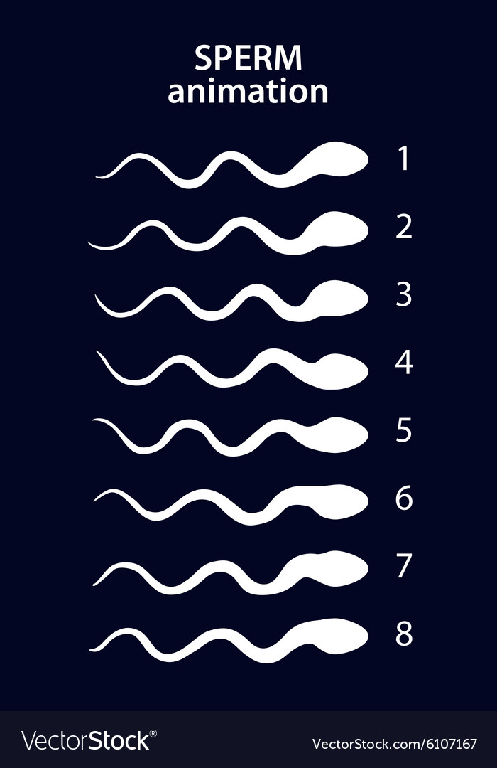 Sperm activity sprites for animation vector image