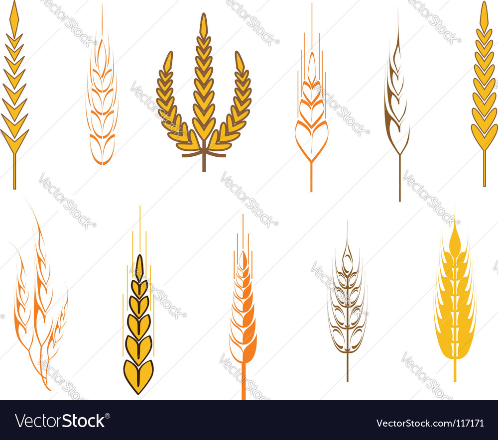 Agriculture symbols vector image