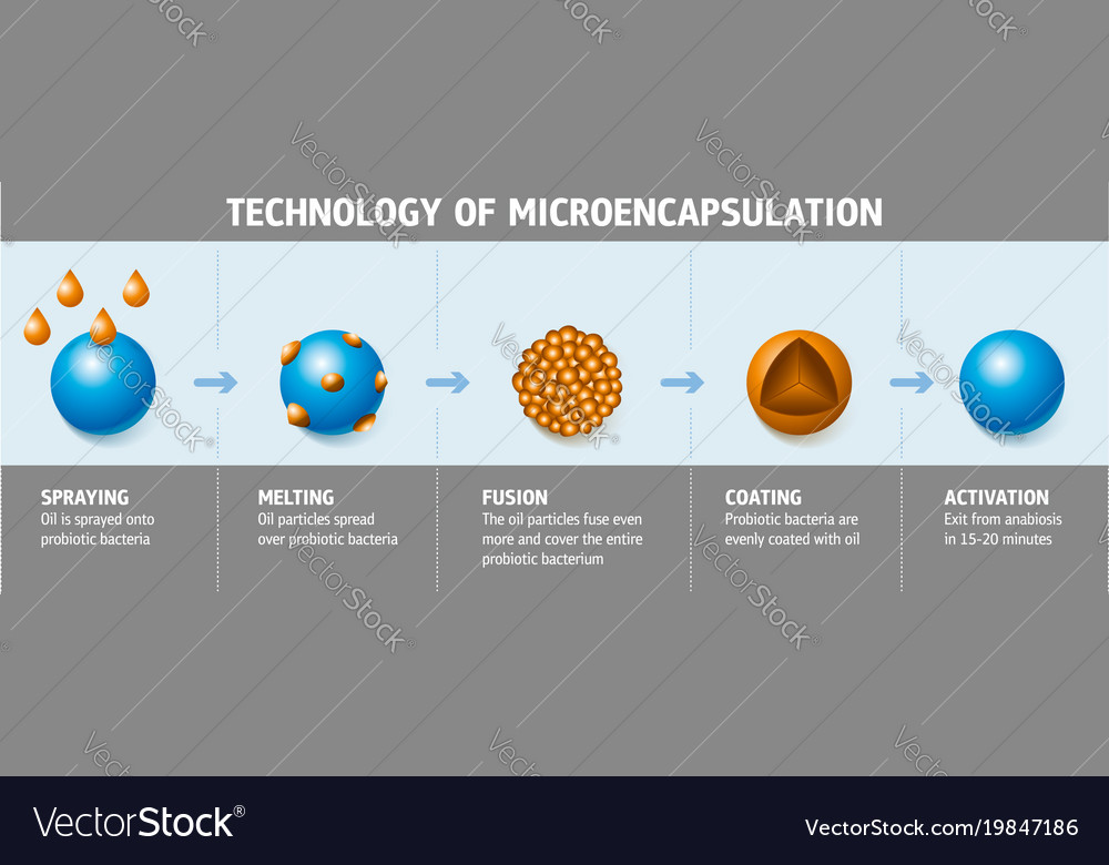 Technology of microencapsulation vector image