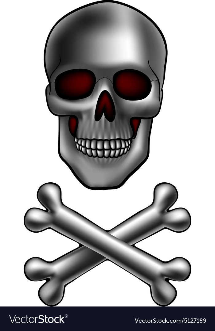 Skull with bones vector image