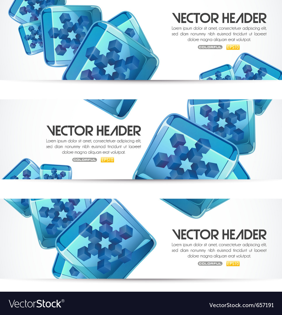 Iced snowflakes headers vector image